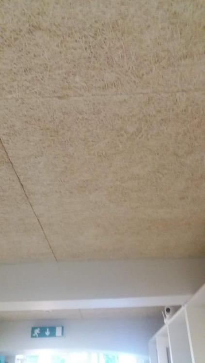 placas fibras madeira.jpg
